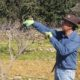 Hima Farm Heroes: Andre Bechara